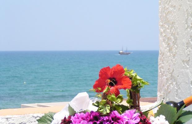 фотографии отеля Adele Beach изображение №7