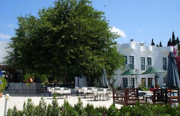 фотографии отеля Flora Safir Hotel изображение №23
