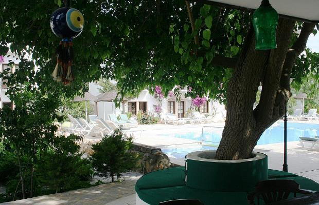 фотографии отеля Flora Safir Hotel изображение №15