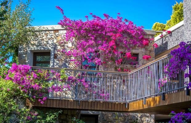 фото Costa Farilya Special Class Hotel Bodrum изображение №58