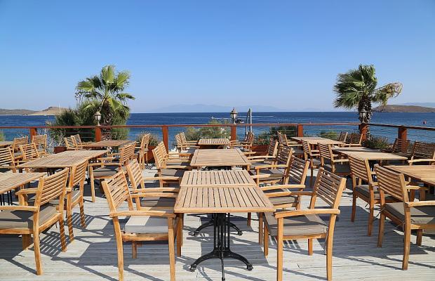 фото отеля Dilekagaci Boutique Hotel & Beach изображение №9