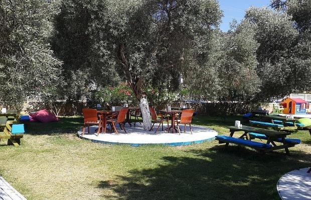 фотографии Club Alisya Beach Hotel изображение №12