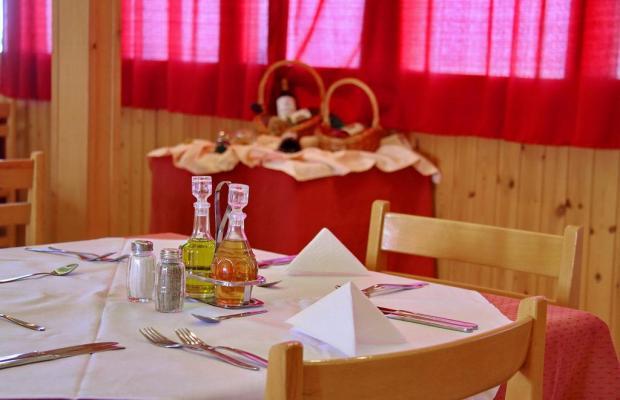 фотографии отеля Ntanelis Hotel (ex. Danelis) изображение №11