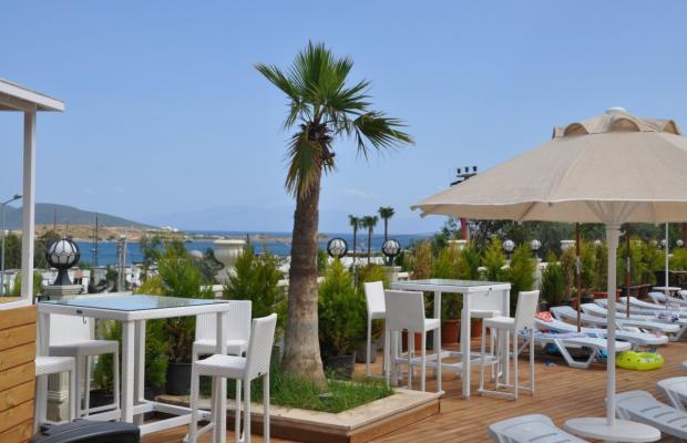 фотографии Blue Green Hotel (ex. Poseidon Suites; Club Anka) изображение №24