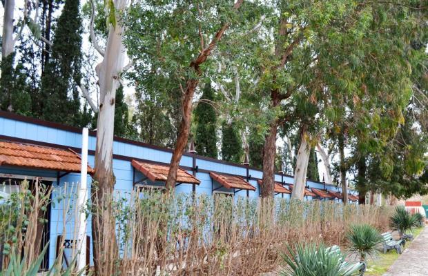 фотографии отеля Ора (ex. УААИ) изображение №19