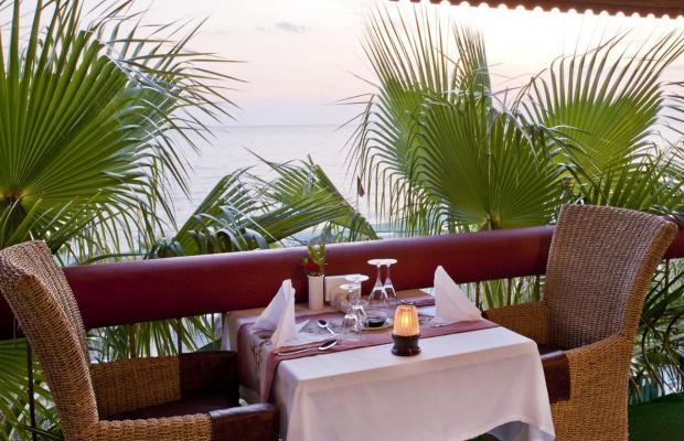 фотографии Botanik Hotel & Resort (ex. Delphin Botanik World of Paradise) изображение №16