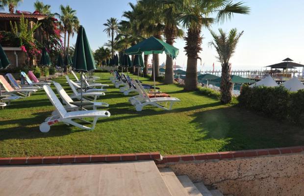 фотографии отеля Seagull Hotel изображение №15