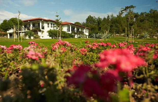 фотографии отеля Tui Blue Sarigerme Park (ex. Iberotel Sarigerme Park) изображение №47