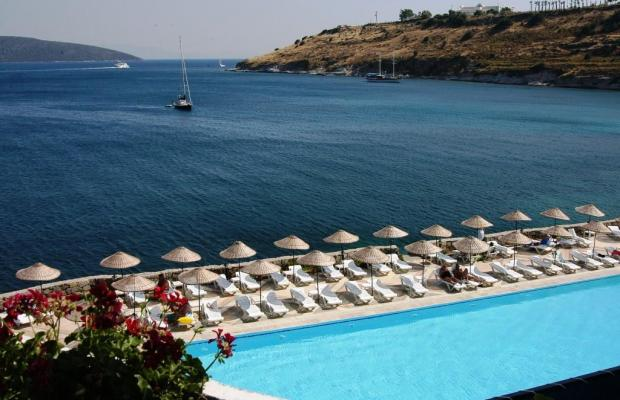 фото отеля Mavi Kumsal (ex. Mavi) изображение №41