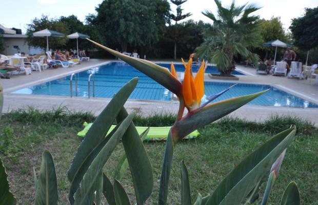 фотографии отеля Hotel Stork изображение №39