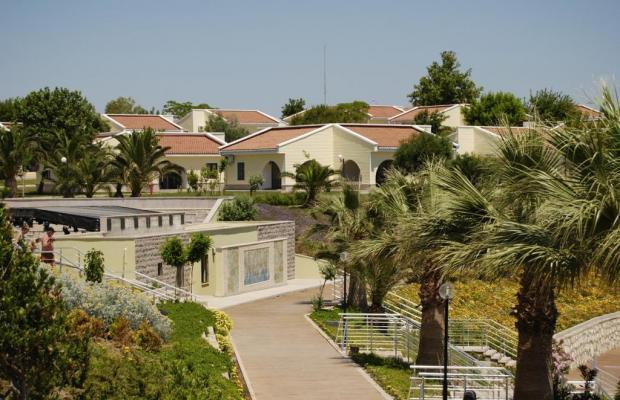 фотографии отеля Palm Wings Beach Resort изображение №35