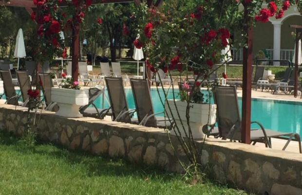 фотографии отеля Palm Wings Beach Resort изображение №19