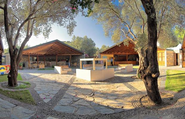 фотографии отеля Ora Tatil Koyu (ex. Ora Holiday Village) изображение №3