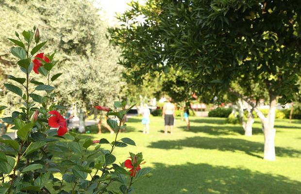 фото Garden Resort Bergamot (ex. New Garden Resort) изображение №10