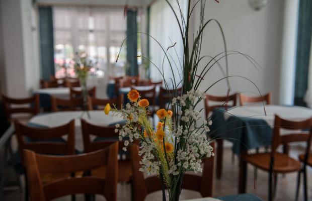 фотографии отеля Alexandros Hotel изображение №19