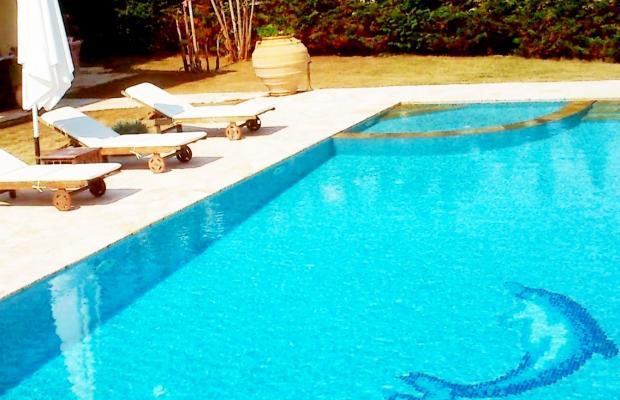 фотографии Villa Armonia изображение №4