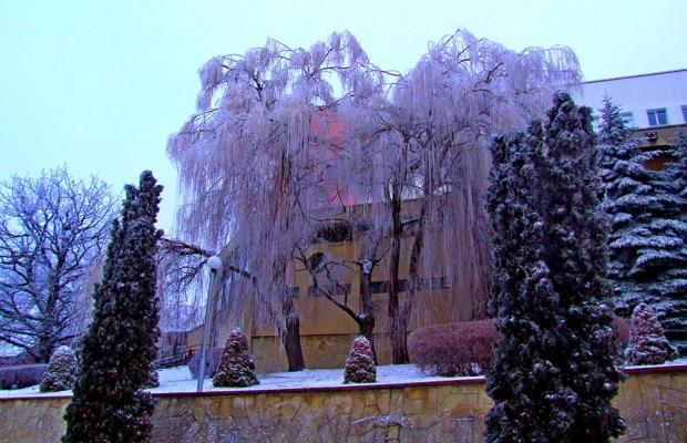 фотографии Горный Воздух (Gornyj Vozduh) изображение №4