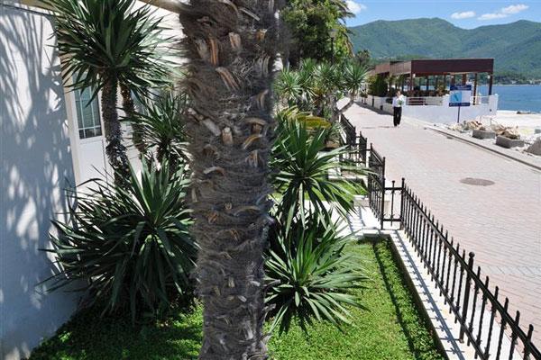фото отеля Depadans De Mar изображение №5