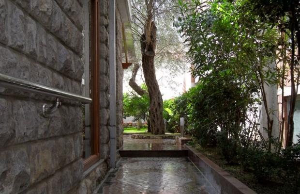 фото Villa Nikolaselena изображение №6