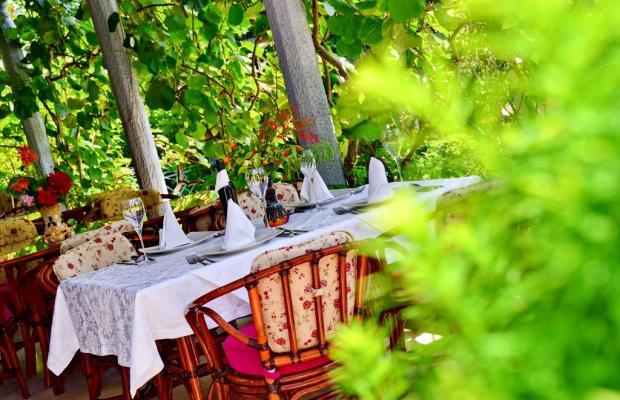 фотографии отеля Villa Velzon изображение №23