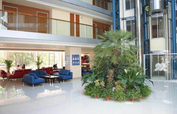 фотографии отеля Sol Marina Palace  (Соль Марина Палас) изображение №3