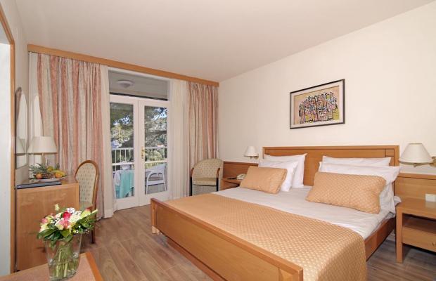 фотографии Hotel Splendid изображение №4
