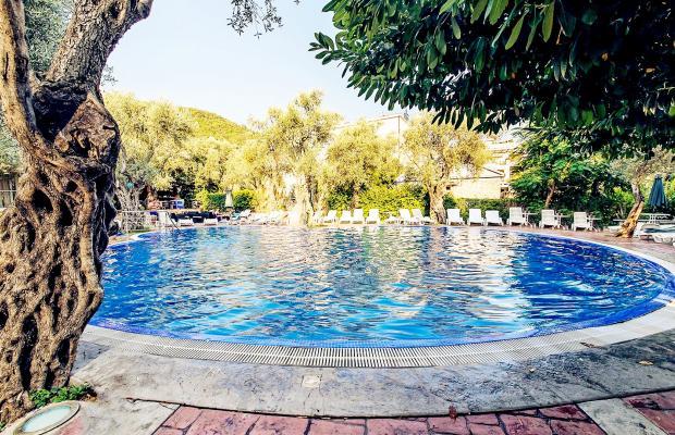 фото отеля Vile Oliva изображение №1