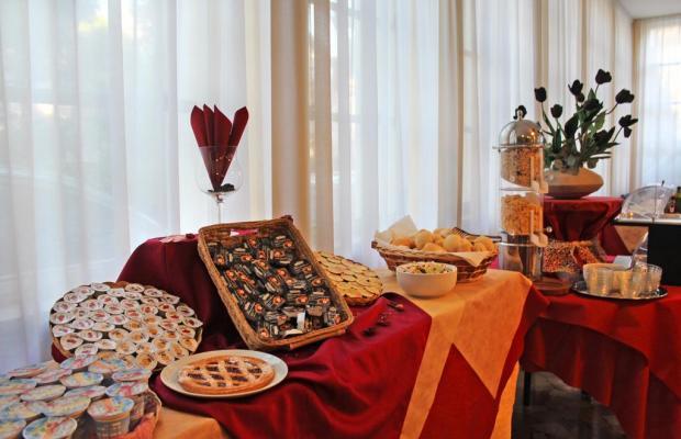 фотографии отеля New Primula изображение №35