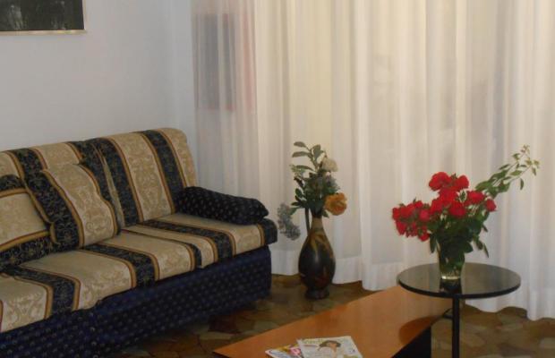 фотографии отеля New Primula изображение №23