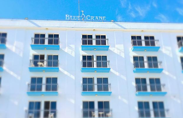 фотографии Blue Crane Apts изображение №16