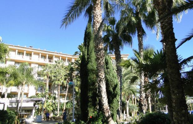 фотографии Allsun Hotel Estrella & Coral de Mar Resort (ex. Estrella Coral de Mar Resort Wellness & Spa) изображение №16