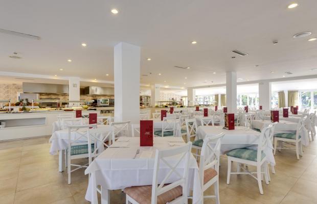 фотографии отеля Alcudia Garden изображение №31