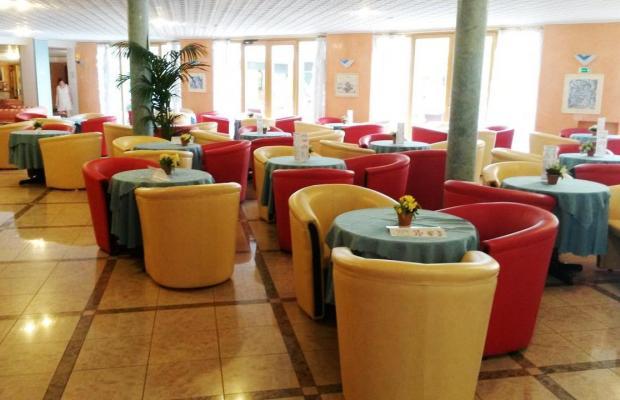 фотографии отеля Garda Bellevue изображение №23