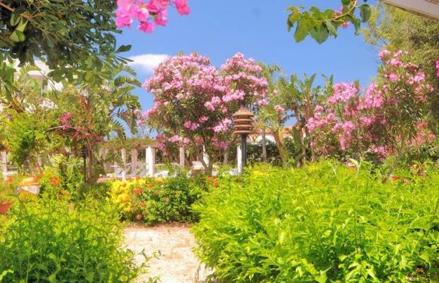 фотографии Saracen Sands Village изображение №16
