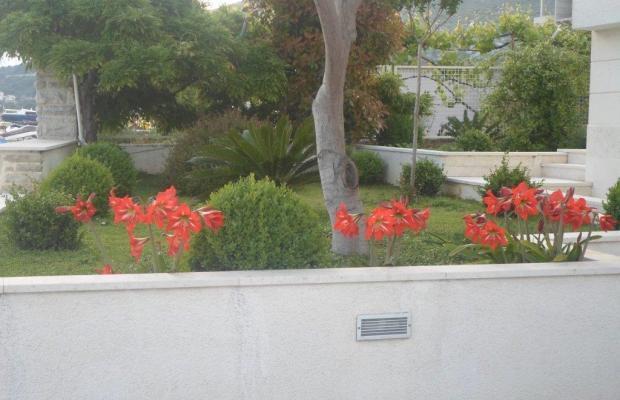фото Villa Amor изображение №18