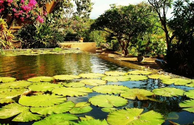 фото Zen Resort изображение №22