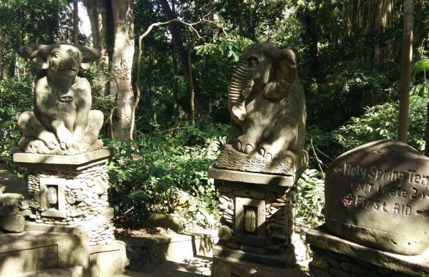 фотографии отеля Arma Museum & Resort изображение №27