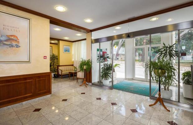 фото отеля Hotel Villa Bacchus изображение №21