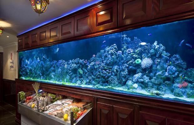 фотографии отеля Swiss Hotel Corniche (ex. The Royal Hotel) изображение №19