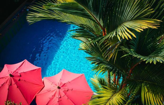 фото CC's Hideaway Hotel (ex. CC Bloom) изображение №10