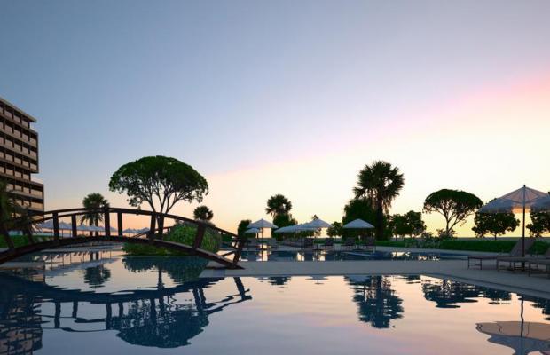 фотографии отеля Louis Amada Colossos Resort изображение №15