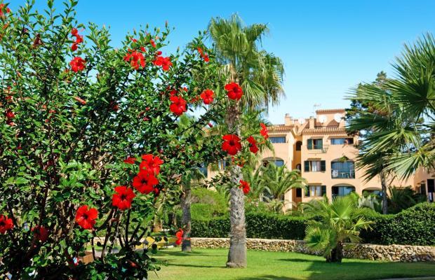 фотографии отеля Eden Village Siesta Playa (ex. Carema Siesta Playa) изображение №15