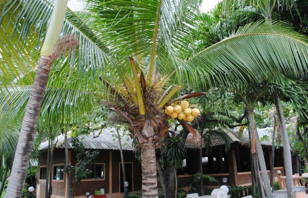 фото отеля Royal Orchid Resort изображение №9