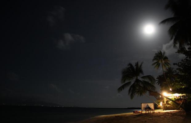 фото отеля Mimosa Resort & Spa изображение №5