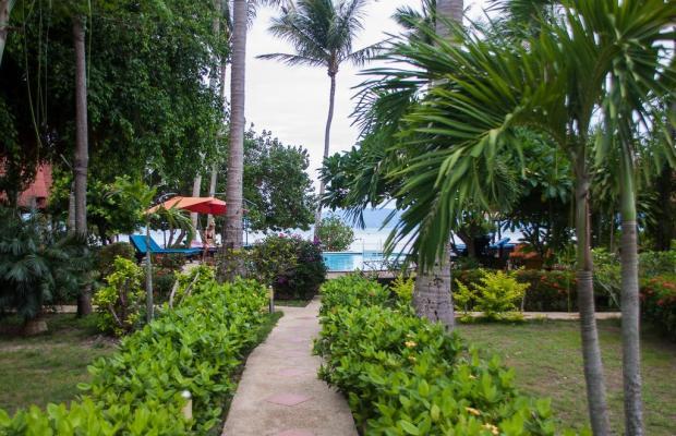 фотографии отеля Morning Star Resort изображение №27