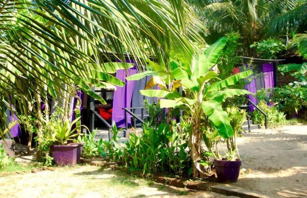 фото отеля H2O Agonda изображение №9