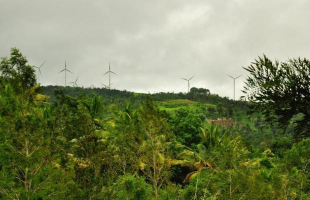 фотографии Punarjani Ayurvedic Resorts изображение №8