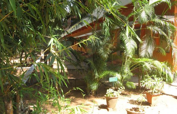 фото Rajah Ayurvedic Hospital Rajah Healthy Acres изображение №2