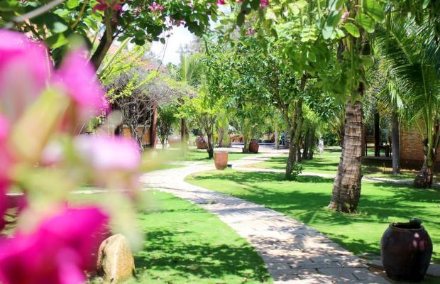 фотографии отеля Blue Shell Resort изображение №39