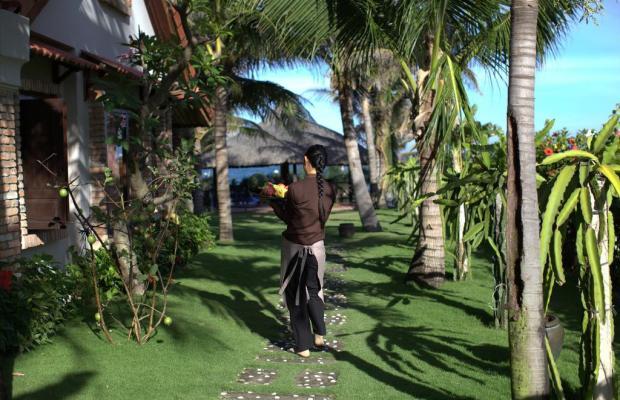 фото Green Papaya Organic Village изображение №26